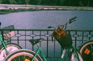 Lacul Valea Morilor 2013